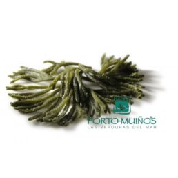 Fresh green algae bulk ( Kg ): Ramallo de Mar (Codium tomentosum)